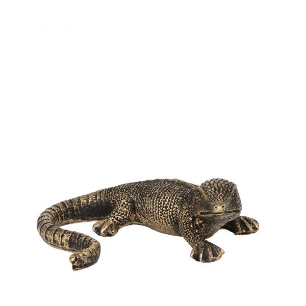 Lizard accessoires