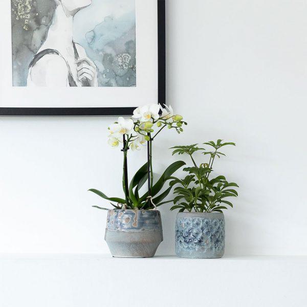 Kolibri Home - bloempot sierpot pot exclusive vintage oranje blauw set 6cm 9cm 1