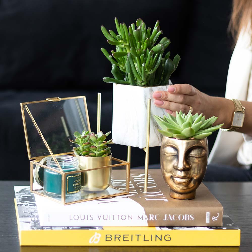 Kolibri Home - bloempot sierpot pot face-2-face gold 6cm