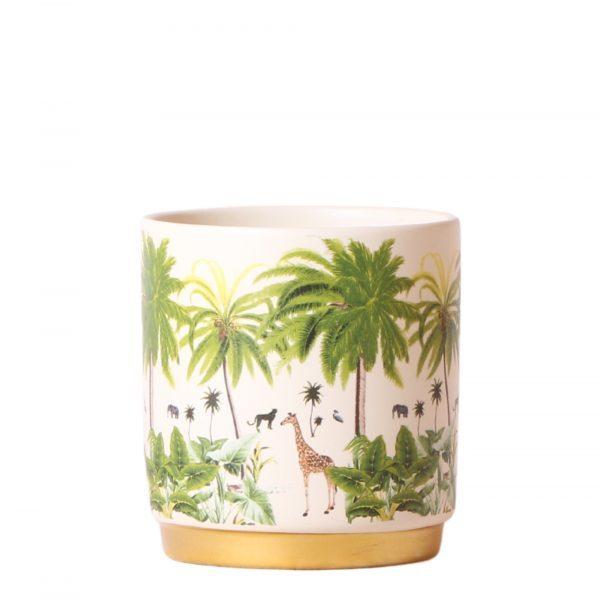 Jungle pot