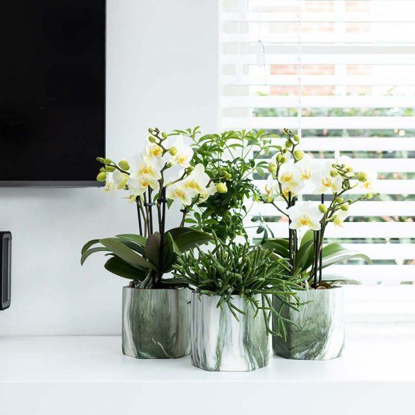 Kolibri Home - bloempot sierpot pot marble green 9cm