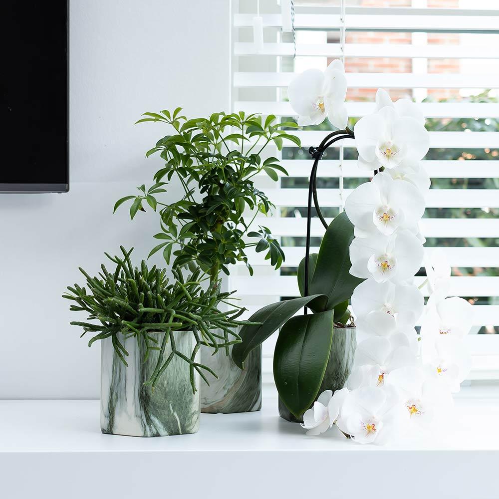 Kolibri Home - bloempot sierpot pot marble green