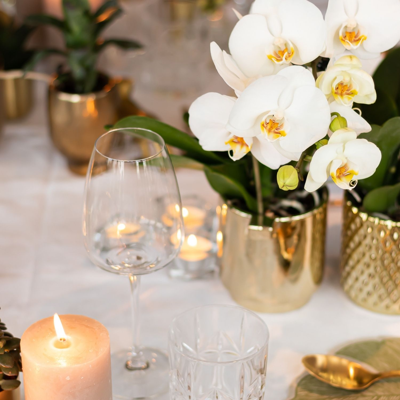 Kolibri Company - Jewel orchidee Greenand in Modern can gold diamond pot gold