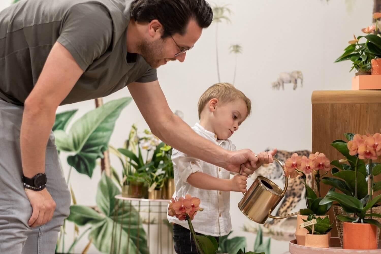 Kolibri Orchids verzorgingstips hoe hoevaak orchidee water geven