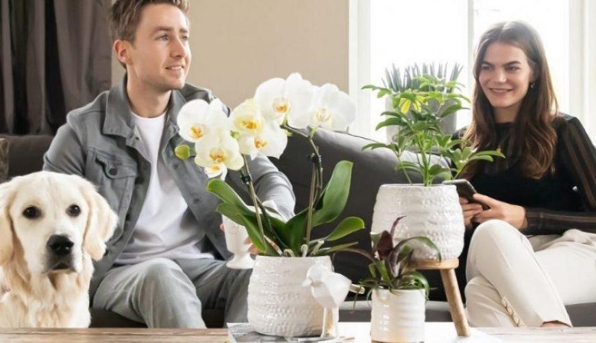 Diervriendelijke planten bij jou thuis!